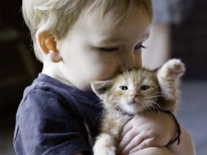 小儿抽动征的主要病因
